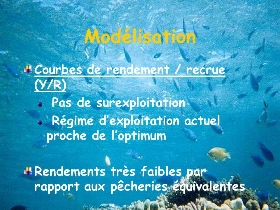 Modélisation Courbes de rendement / recrue (Y/R) Pas de surexploitation Régime dexploitation actuel proche de loptimum Rendements très faibles par rapport aux pêcheries équivalentes