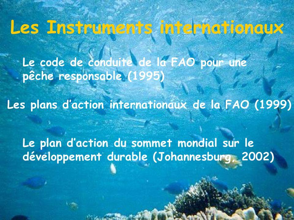 Les Instruments internationaux Les plans daction internationaux de la FAO (1999) Le plan daction du sommet mondial sur le développement durable (Johannesburg, 2002) Le code de conduite de la FAO pour une pêche responsable (1995)