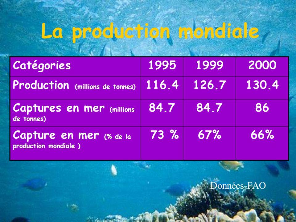 La production mondiale Catégories199519992000 Production (millions de tonnes) 116.4126.7130.4 Captures en mer (millions de tonnes) 84.7 86 Capture en mer (% de la production mondiale ) 73 %67%66% Données FAO