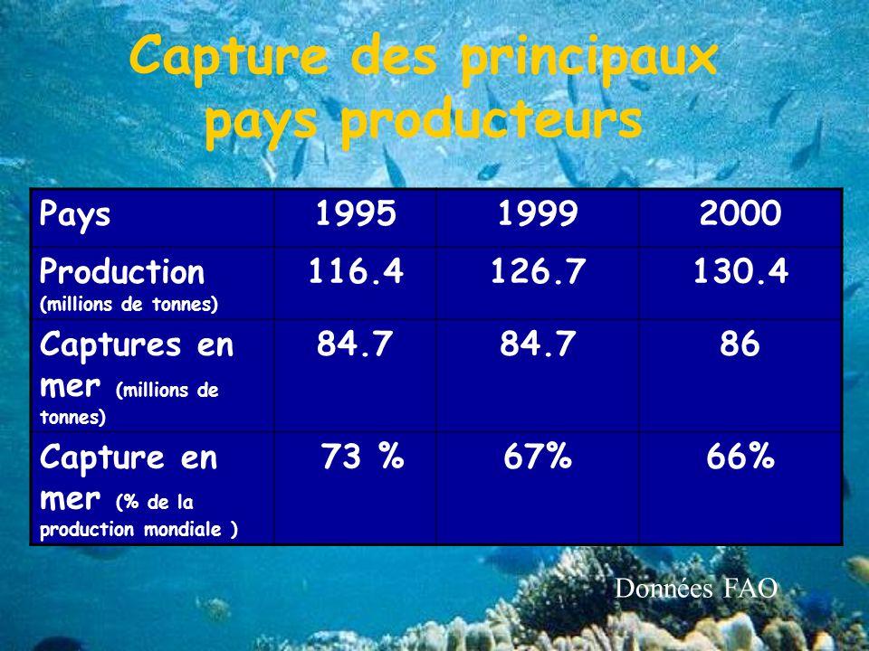 Capture des principaux pays producteurs Pays199519992000 Production (millions de tonnes) 116.4126.7130.4 Captures en mer (millions de tonnes) 84.7 86 Capture en mer (% de la production mondiale ) 73 %67%66% Données FAO