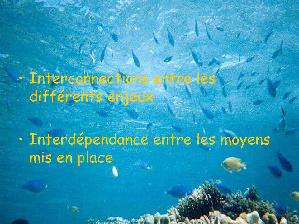 Interconnections entre les différents enjeux Interdépendance entre les moyens mis en place
