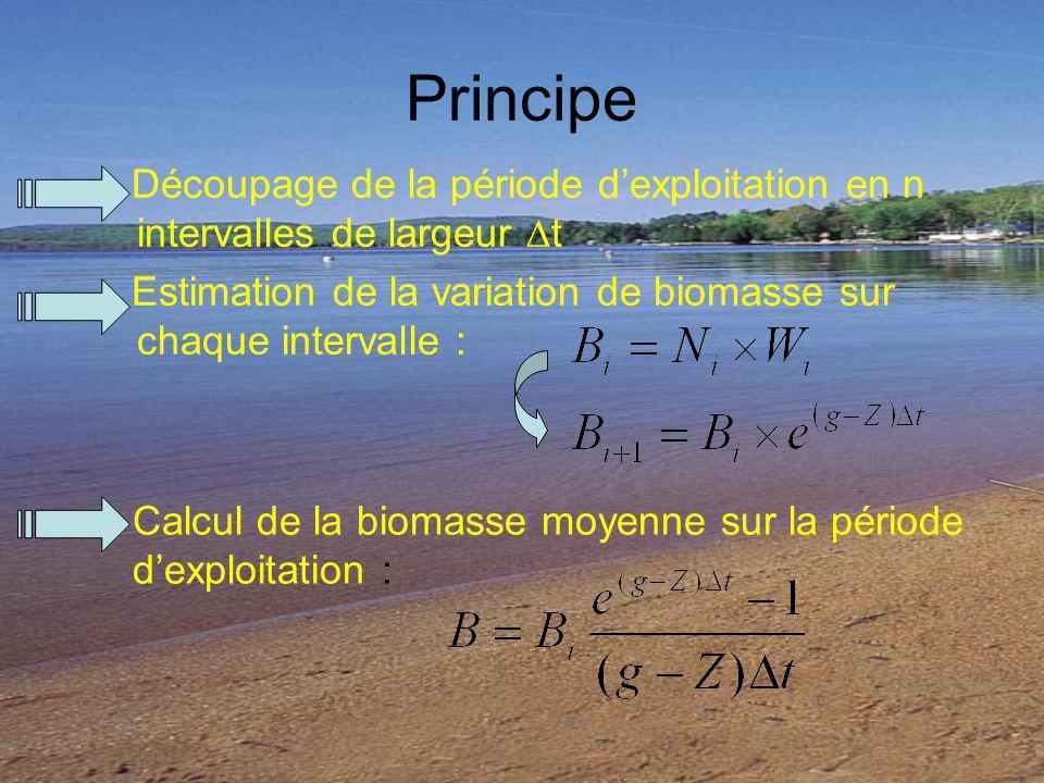 Principe Découpage de la période dexploitation en n intervalles de largeur t Estimation de la variation de biomasse sur chaque intervalle : Calcul de la biomasse moyenne sur la période dexploitation :