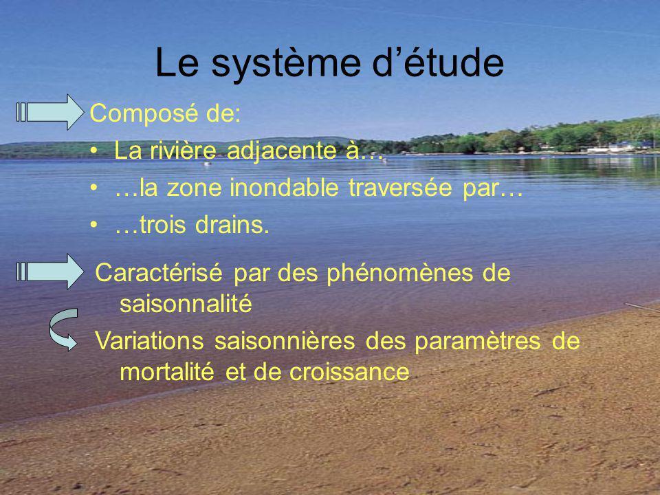 Le système détude Composé de: La rivière adjacente à… …la zone inondable traversée par… …trois drains. Caractérisé par des phénomènes de saisonnalité