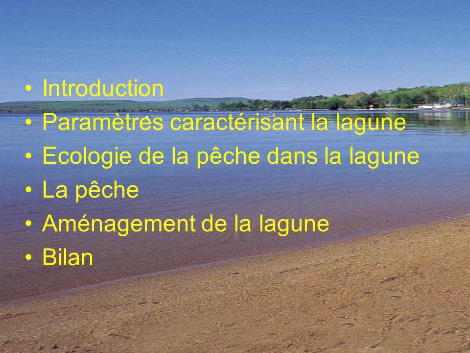 Introduction Paramètres caractérisant la lagune Ecologie de la pêche dans la lagune La pêche Aménagement de la lagune Bilan
