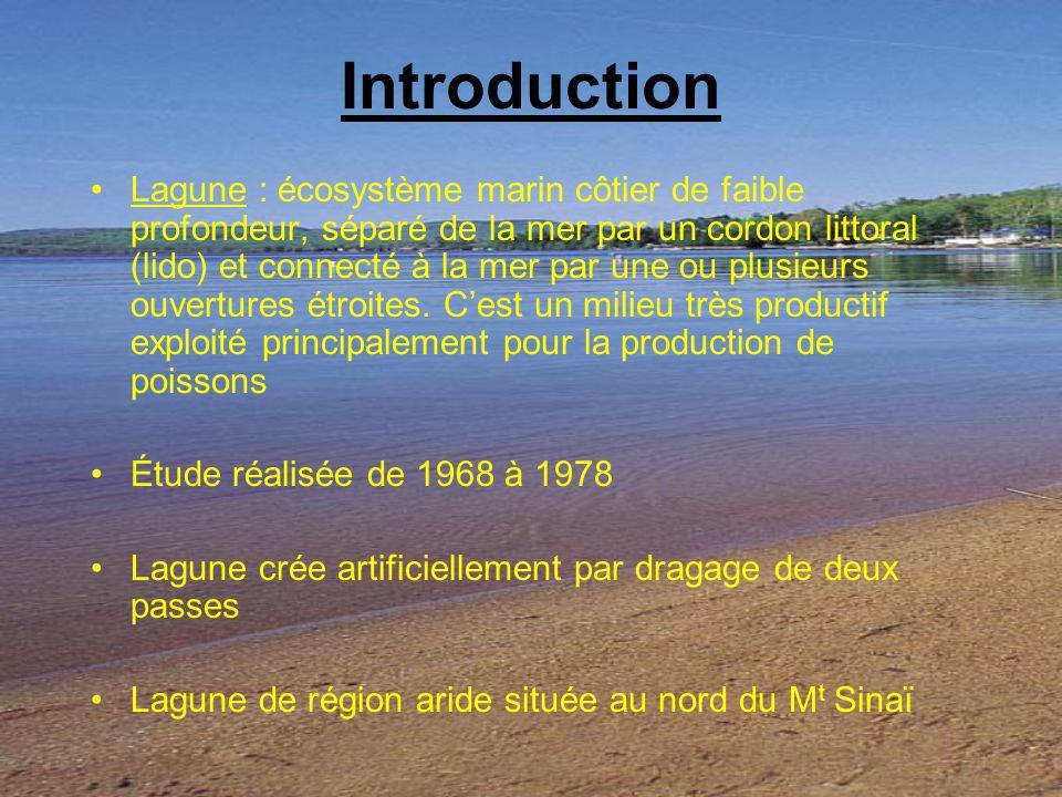 Introduction Lagune : écosystème marin côtier de faible profondeur, séparé de la mer par un cordon littoral (lido) et connecté à la mer par une ou plu