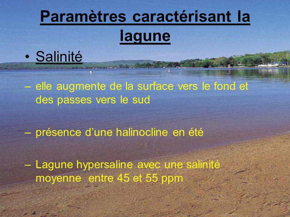 Paramètres caractérisant la lagune Salinité –elle augmente de la surface vers le fond et des passes vers le sud –présence dune halinocline en été –Lag
