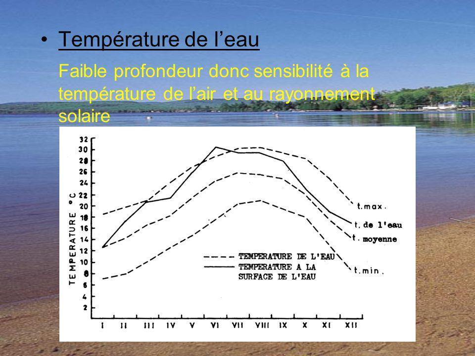 Température de leau Faible profondeur donc sensibilité à la température de lair et au rayonnement solaire