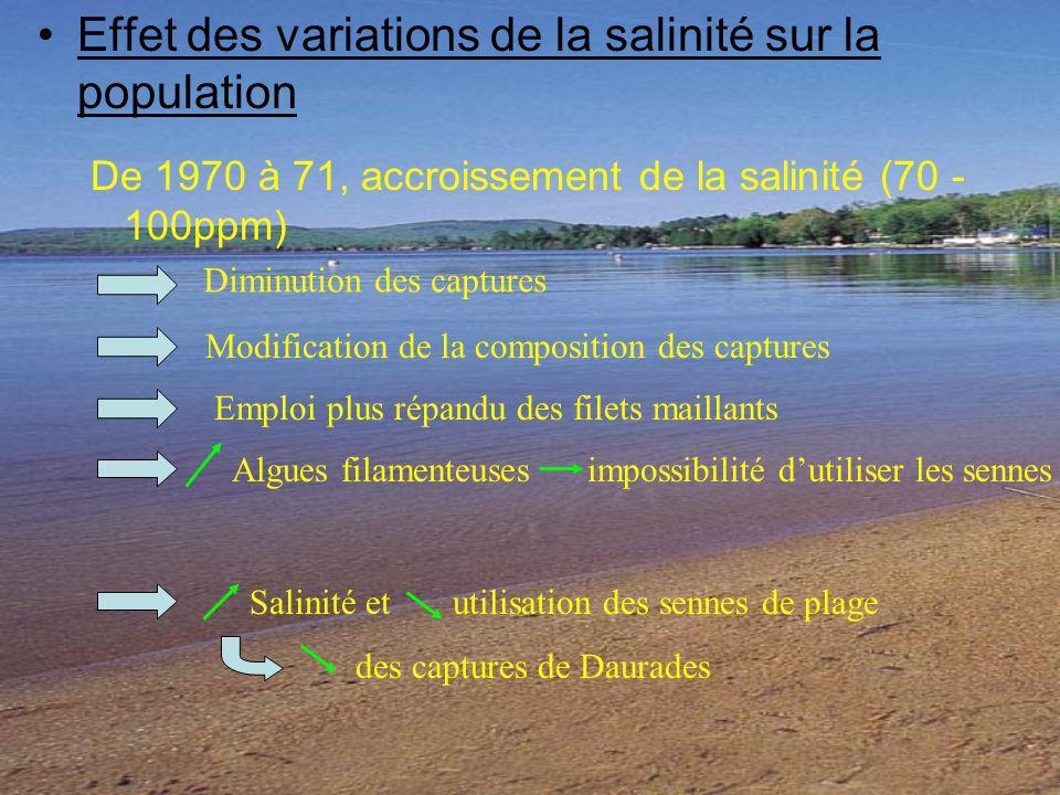 Effet des variations de la salinité sur la population De 1970 à 71, accroissement de la salinité (70 - 100ppm) Diminution des captures Modification de