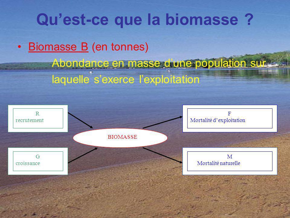 Quest-ce que la biomasse ? Biomasse B (en tonnes) Abondance en masse dune population sur laquelle sexerce lexploitation R recrutement G croissance BIO