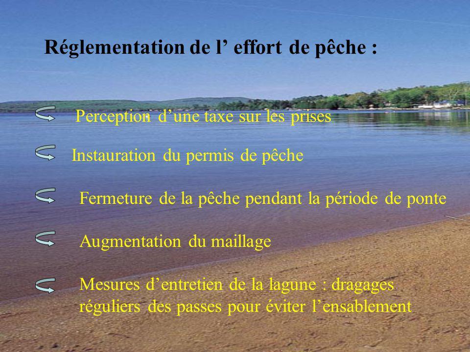 Réglementation de l effort de pêche : Mesures dentretien de la lagune : dragages réguliers des passes pour éviter lensablement Perception dune taxe sur les prises Instauration du permis de pêche Fermeture de la pêche pendant la période de ponte Augmentation du maillage