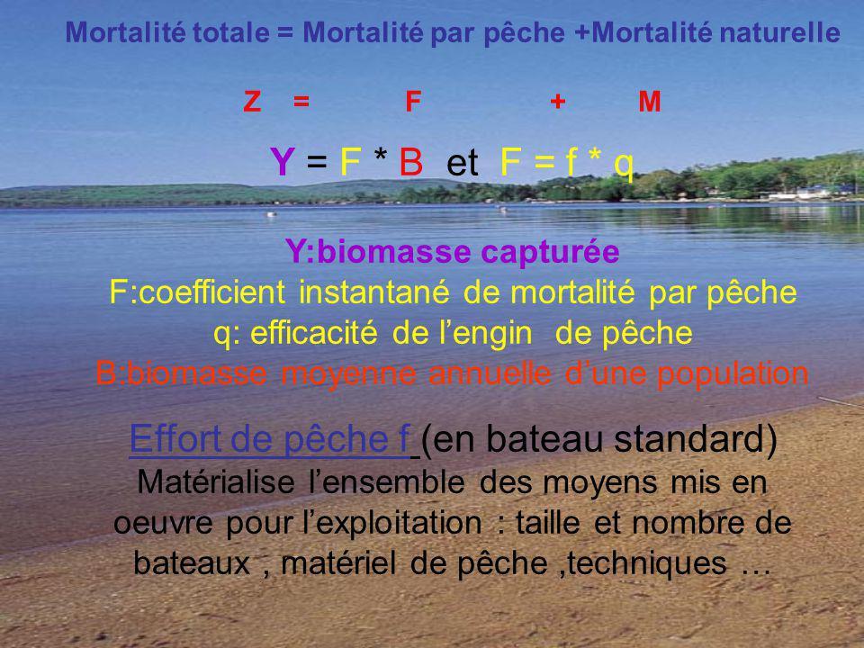 Mortalité totale = Mortalité par pêche +Mortalité naturelle Z = F + M Y = F * B et F = f * q Y:biomasse capturée F:coefficient instantané de mortalité
