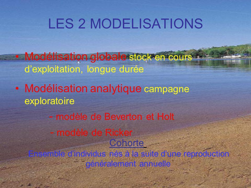 LES 2 MODELISATIONS Modélisation globale stock en cours dexploitation, longue durée Modélisation analytique campagne exploratoire - modèle de Beverton et Holt - modèle de Ricker Cohorte Ensemble dindividus nés à la suite dune reproduction généralement annuelle