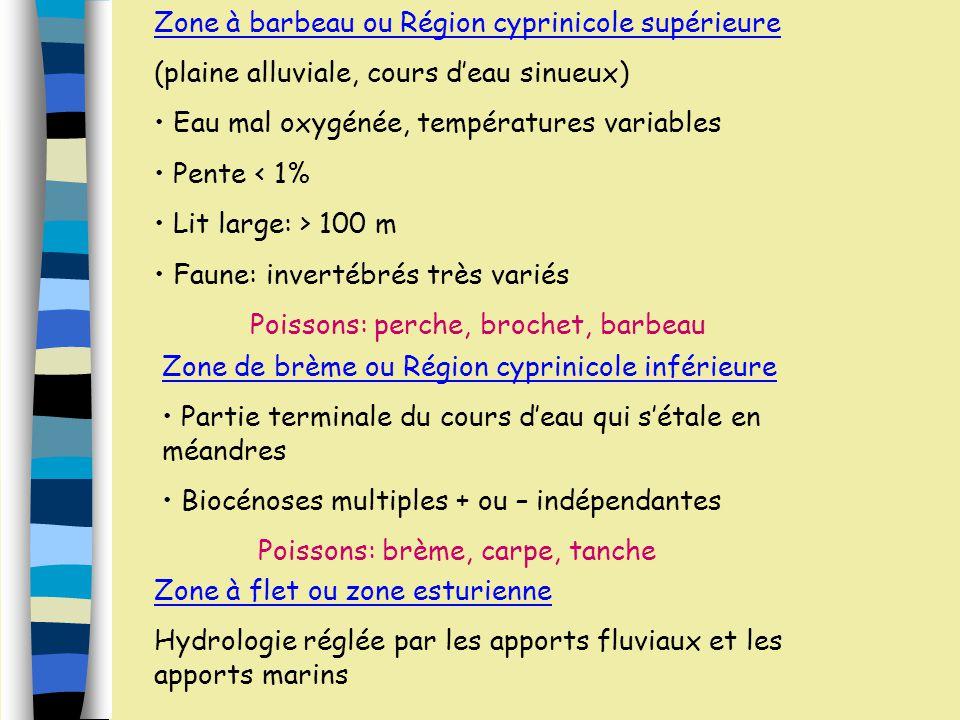 Zonation Piscicole Zone à truites ou Région salmonicole supérieure Eau torrentielle, rapide, très oxygénée, fraîche Pente > 4% Lit étroit Faune: inver