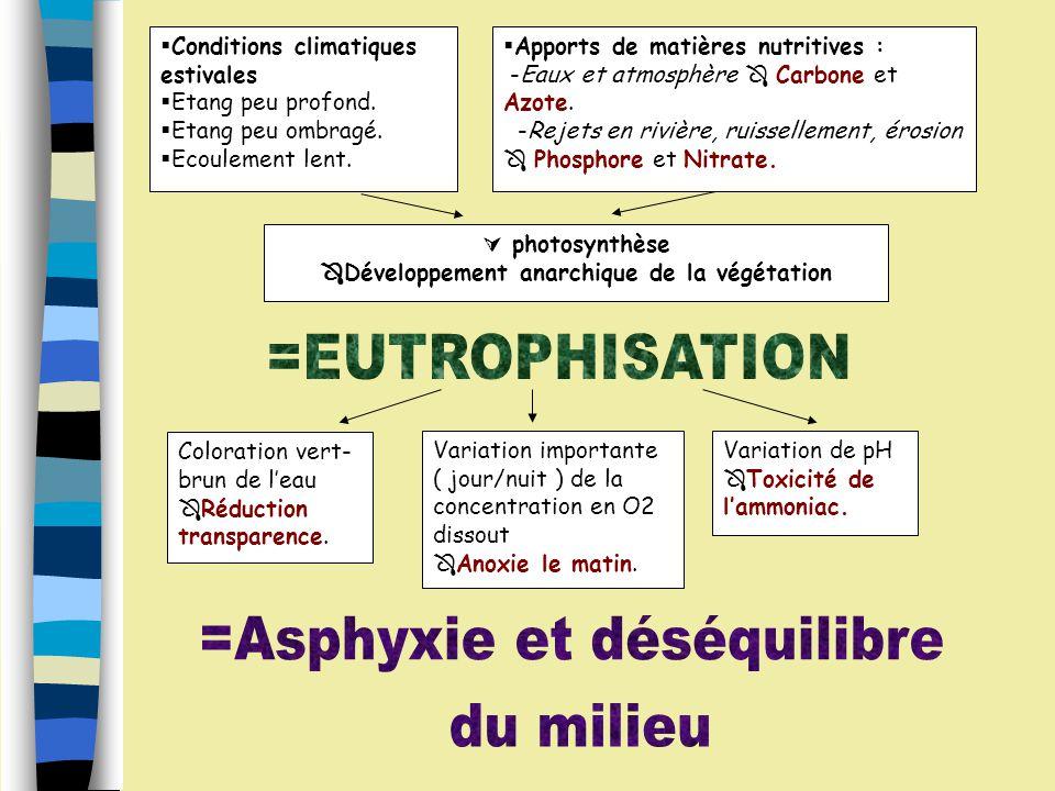 pH Dioxygène zoo et/ou phytoplancton Matières organiques CO2 Phosphore Ammoniaque NH3 NO2 NO3 NH4+ Fertilisants