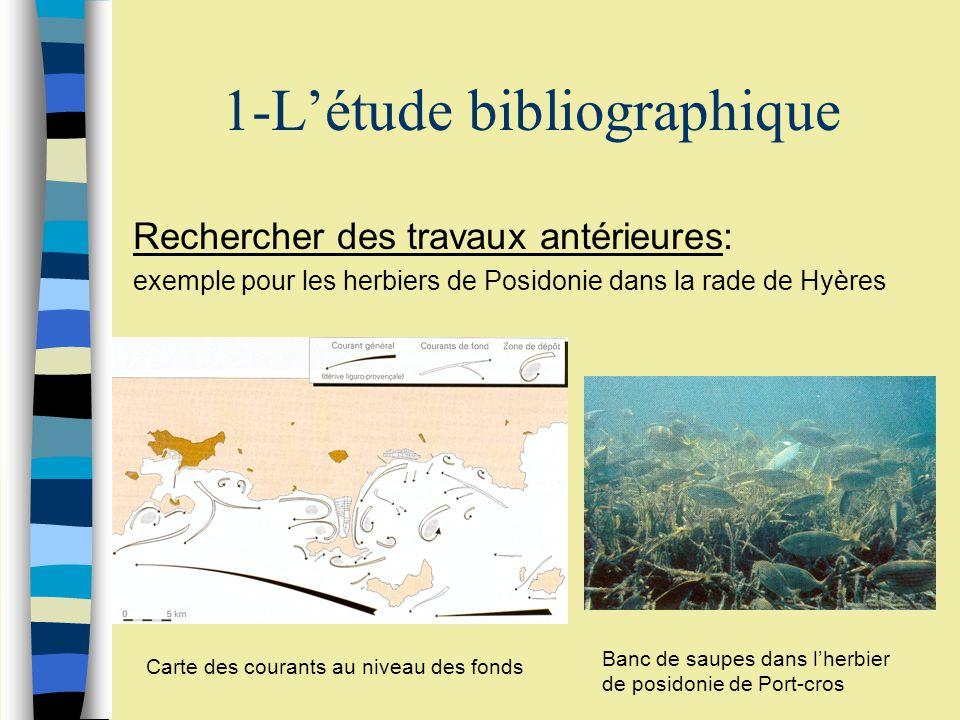 1-Létude bibliographique Rechercher des travaux antérieures: exemple pour les herbiers de Posidonie dans la rade de Hyères Carte des courants au niveau des fonds Banc de saupes dans lherbier de posidonie de Port-cros