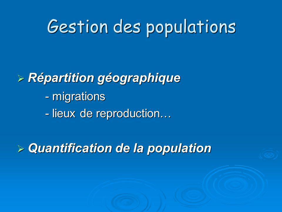 Gestion des populations Répartition géographique Répartition géographique - migrations - lieux de reproduction… Quantification de la population Quanti