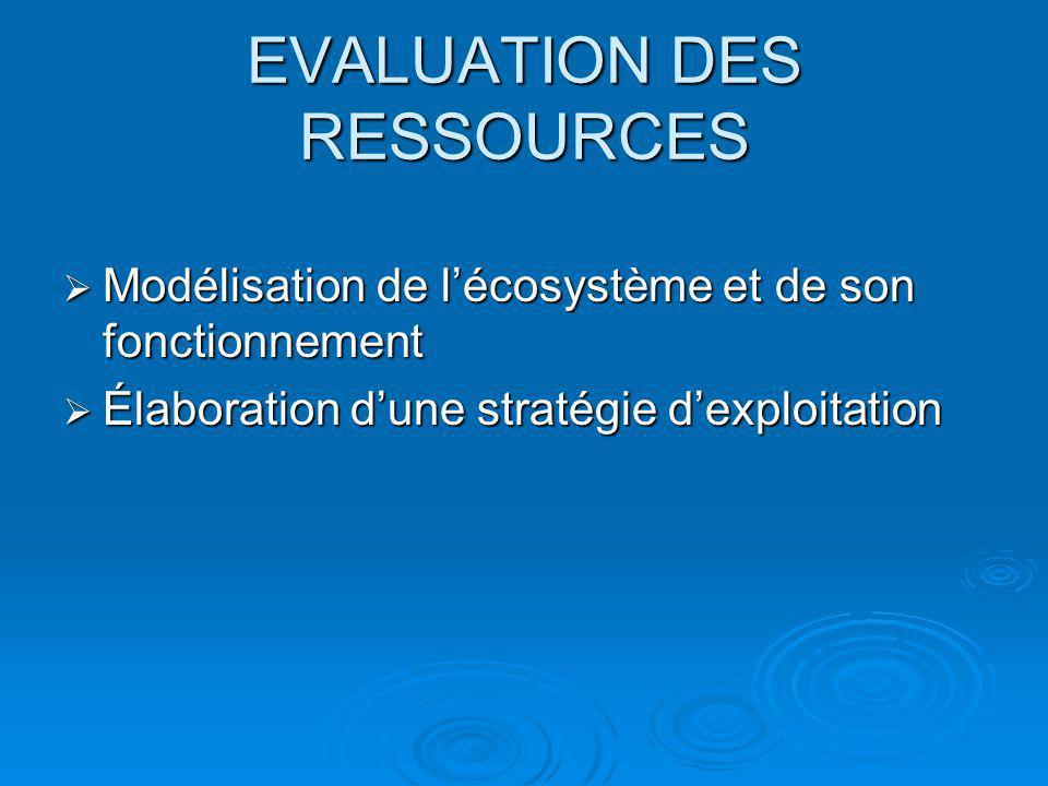 EVALUATION DES RESSOURCES Modélisation de lécosystème et de son fonctionnement Modélisation de lécosystème et de son fonctionnement Élaboration dune s