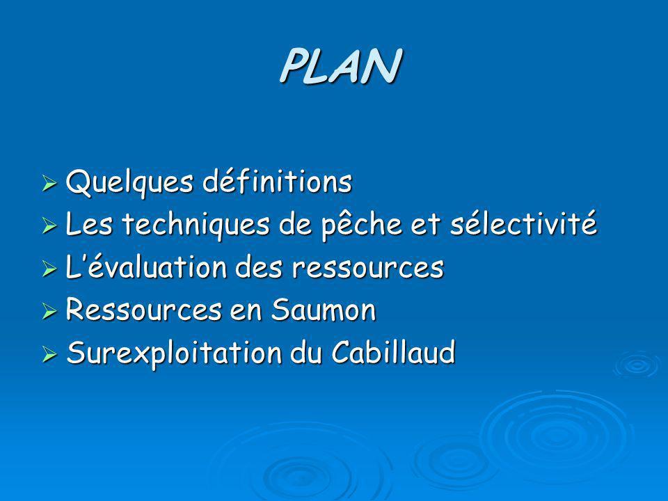 PLAN Quelques définitions Quelques définitions Les techniques de pêche et sélectivité Les techniques de pêche et sélectivité Lévaluation des ressource