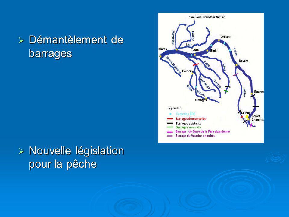 Démantèlement de barrages Démantèlement de barrages Nouvelle législation pour la pêche Nouvelle législation pour la pêche