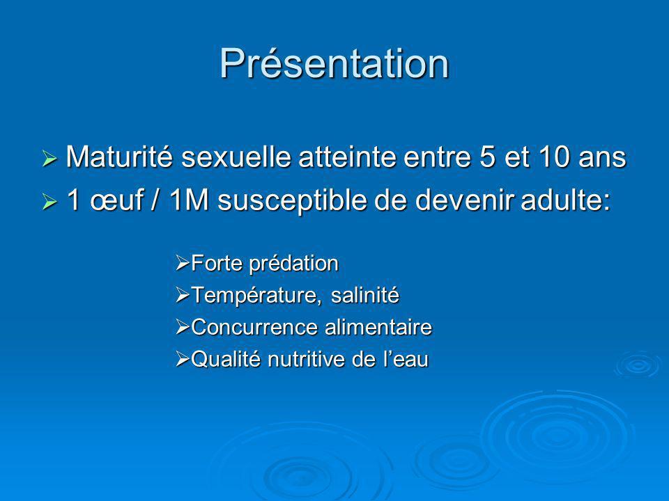 Présentation Maturité sexuelle atteinte entre 5 et 10 ans Maturité sexuelle atteinte entre 5 et 10 ans 1 œuf / 1M susceptible de devenir adulte: 1 œuf