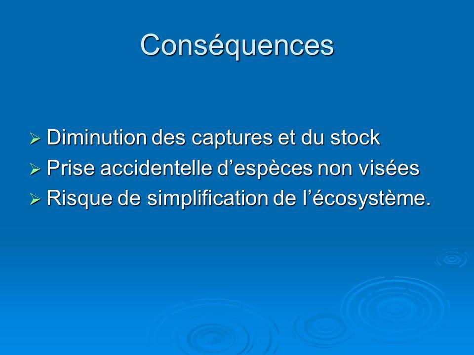 Conséquences Diminution des captures et du stock Diminution des captures et du stock Prise accidentelle despèces non visées Prise accidentelle despèce