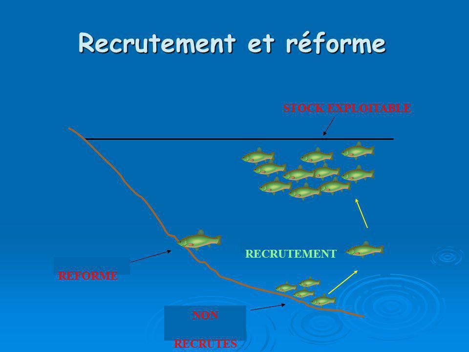 Recrutement et réforme REFORME NON RECRUTES RECRUTEMENT STOCK EXPLOITABLE