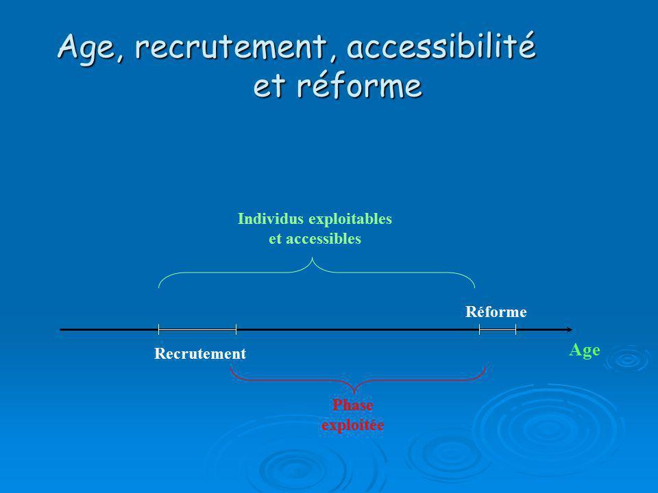 Age, recrutement, accessibilité et réforme Recrutement Age Réforme Individus exploitables et accessibles Phase exploitée