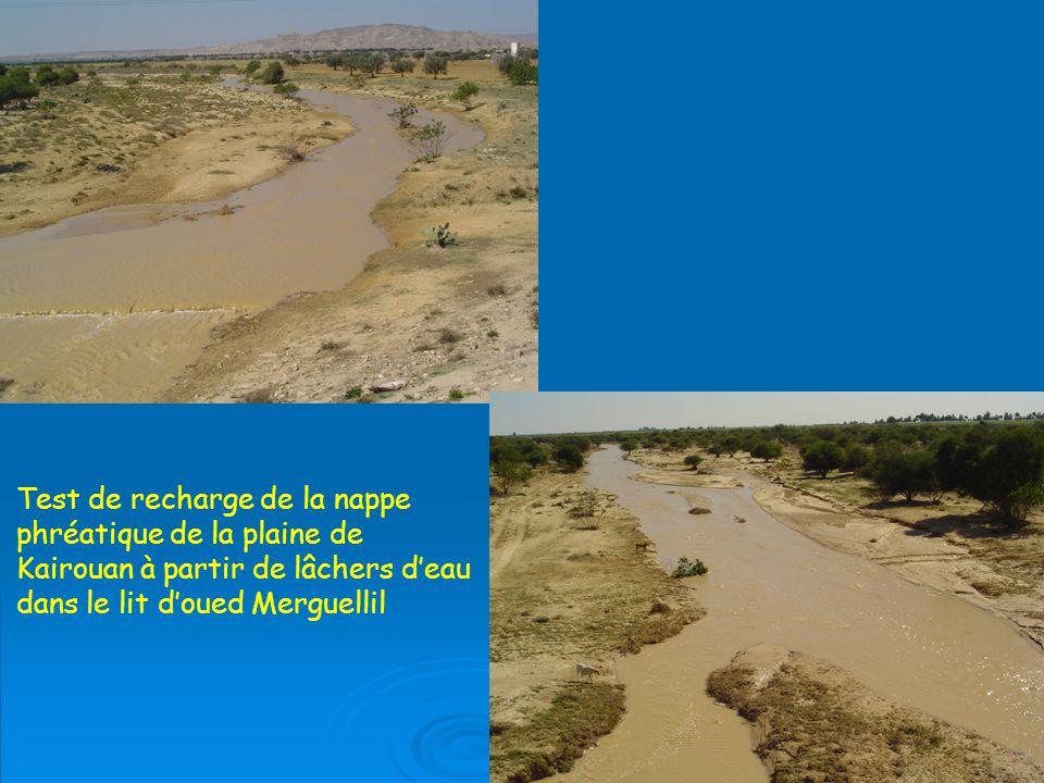 Test de recharge de la nappe phréatique de la plaine de Kairouan à partir de lâchers deau dans le lit doued Merguellil