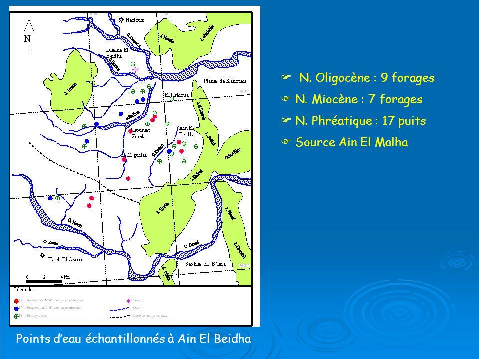 Points deau échantillonnés à Ain El Beidha N.Oligocène : 9 forages N.