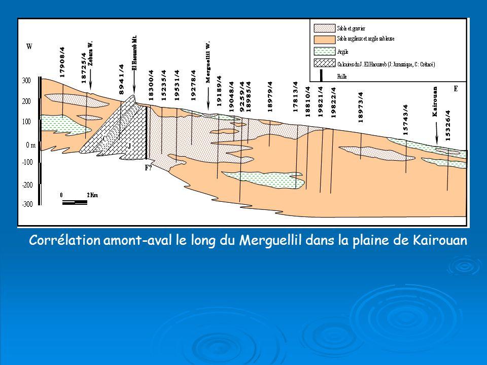 Corrélation amont-aval le long du Merguellil dans la plaine de Kairouan