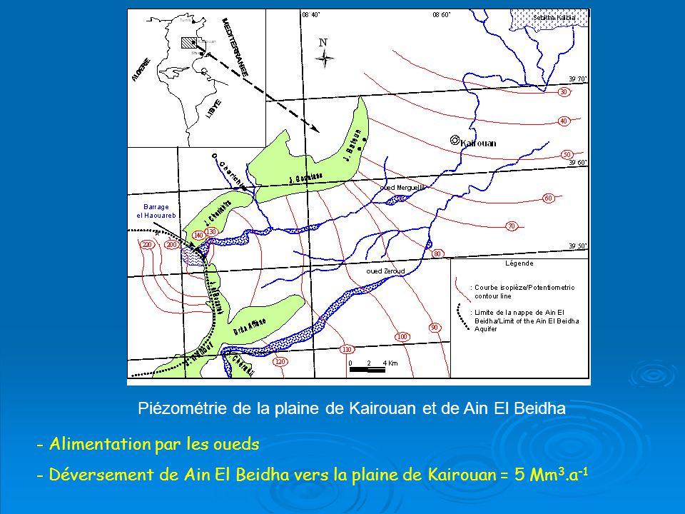 Piézométrie de la plaine de Kairouan et de Ain El Beidha - Alimentation par les oueds - Déversement de Ain El Beidha vers la plaine de Kairouan = 5 Mm 3.a -1