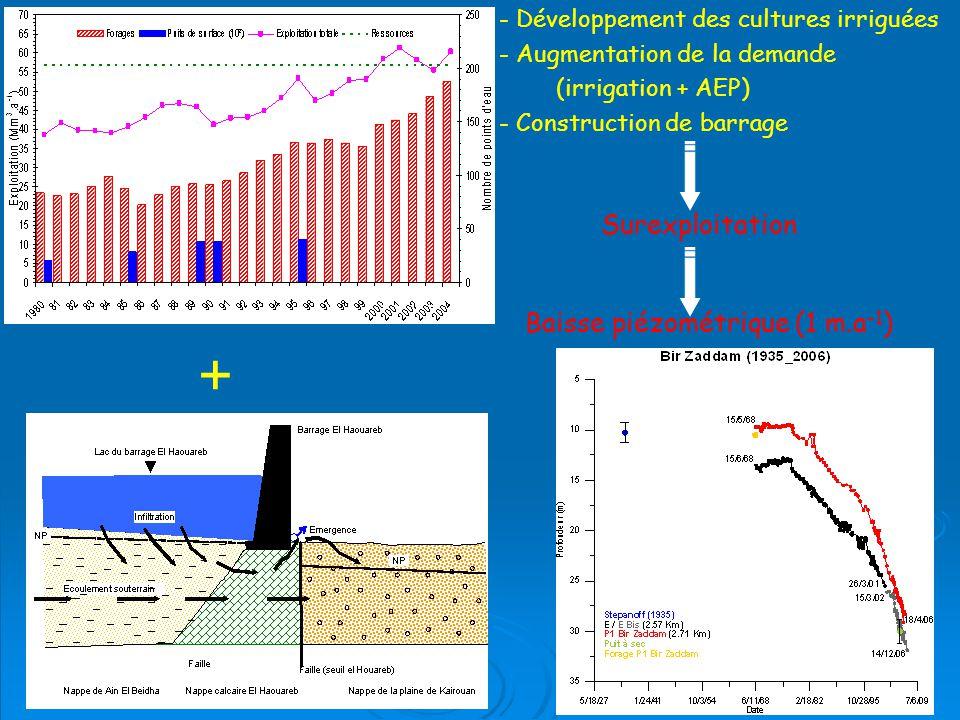 + - Développement des cultures irriguées - Augmentation de la demande (irrigation + AEP) - Construction de barrage Surexploitation Baisse piézométrique (1 m.a -1 )