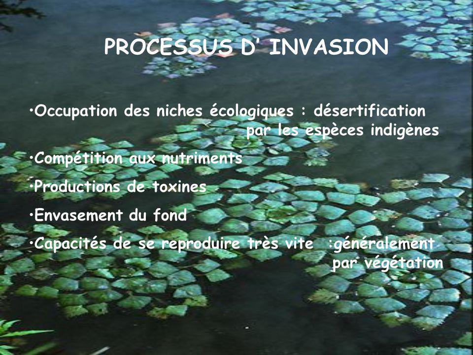 LES VOIES D INTRODUCTION Liaison entre deux mers (ex « les espèces lessepsiennes) Trafic maritime Aquaculture Aquariophilie Importations de plantes d