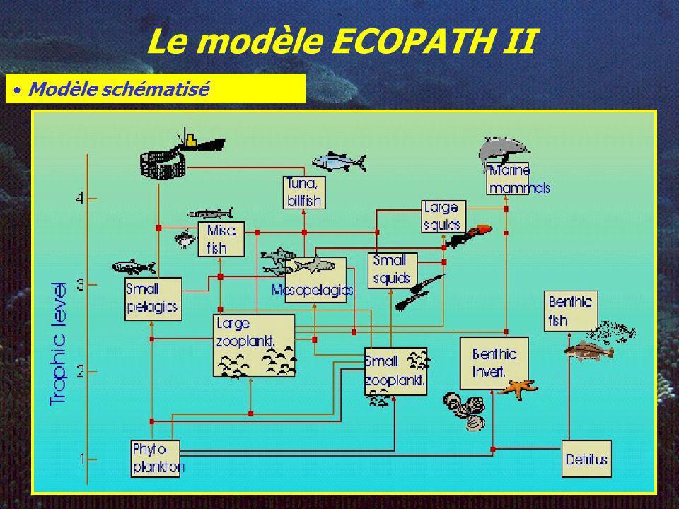 Le modèle ECOPATH II Définition de lécosystème : Condition à remplir: Interactions externes<<Interactions internes Définition des groupes trophiques M