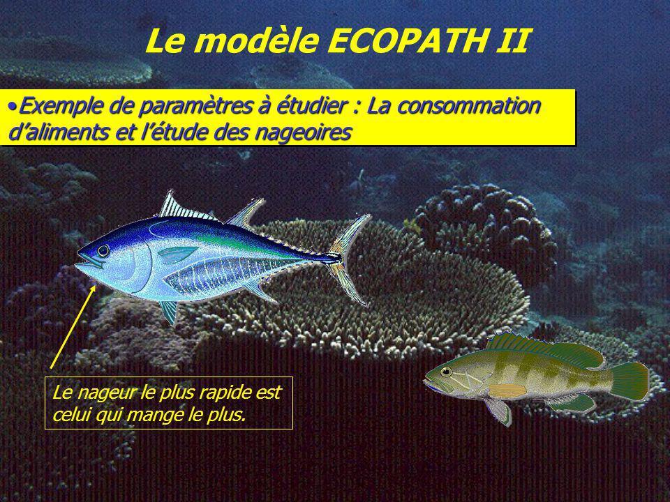 Le modèle ECOPATH II Paramètres utilisés pour ECOPATH BBiomasse (t·km -2 ) P/B Production / Biomasse (t·km -2 ·an -1 ) Q/B Consommation / Biomasse(t·k
