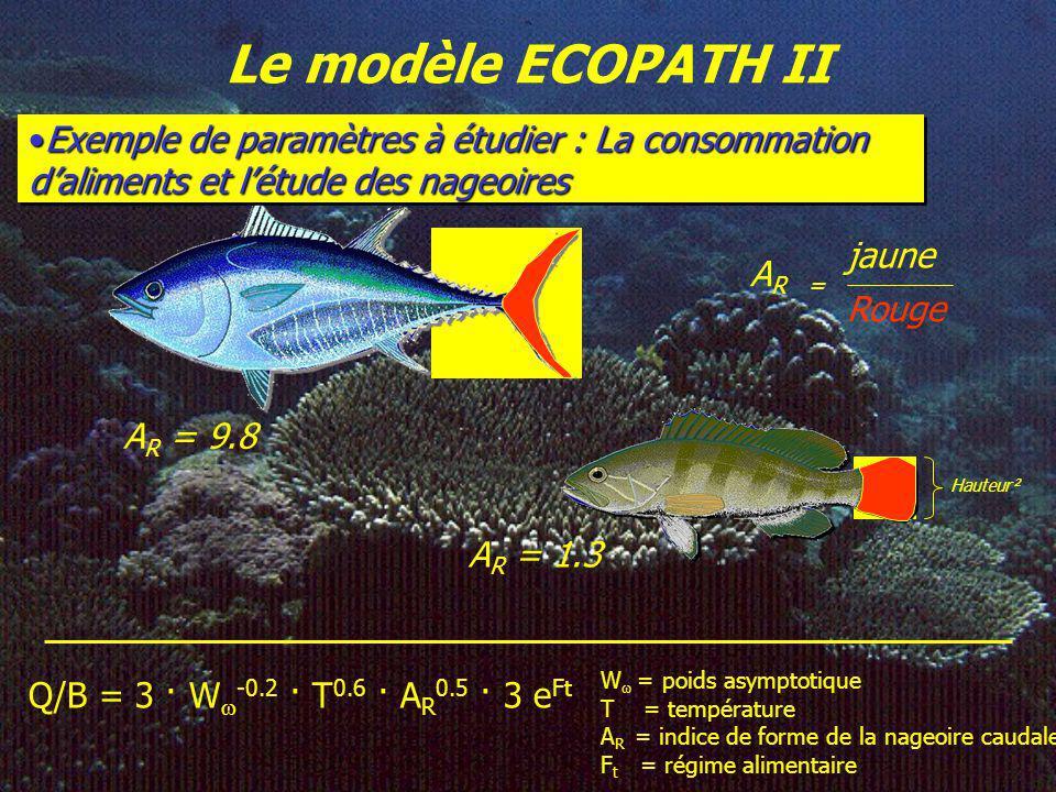 Le modèle ECOPATH II Exemple de paramètres à étudier : La consommation daliments et létude des nageoiresExemple de paramètres à étudier : La consommat