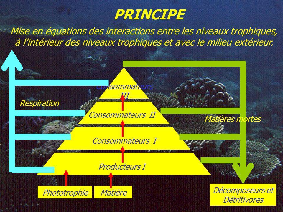 PRINCIPE Mise en équations des interactions entre les niveaux trophiques, à lintérieur des niveaux trophiques et avec le milieu extérieur.