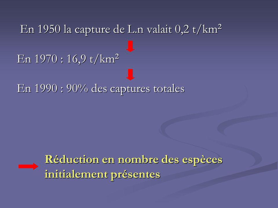 En 1950 la capture de L.n valait 0,2 t/km 2 En 1950 la capture de L.n valait 0,2 t/km 2 En 1970 : 16,9 t/km 2 En 1990 : 90% des captures totales Réduc