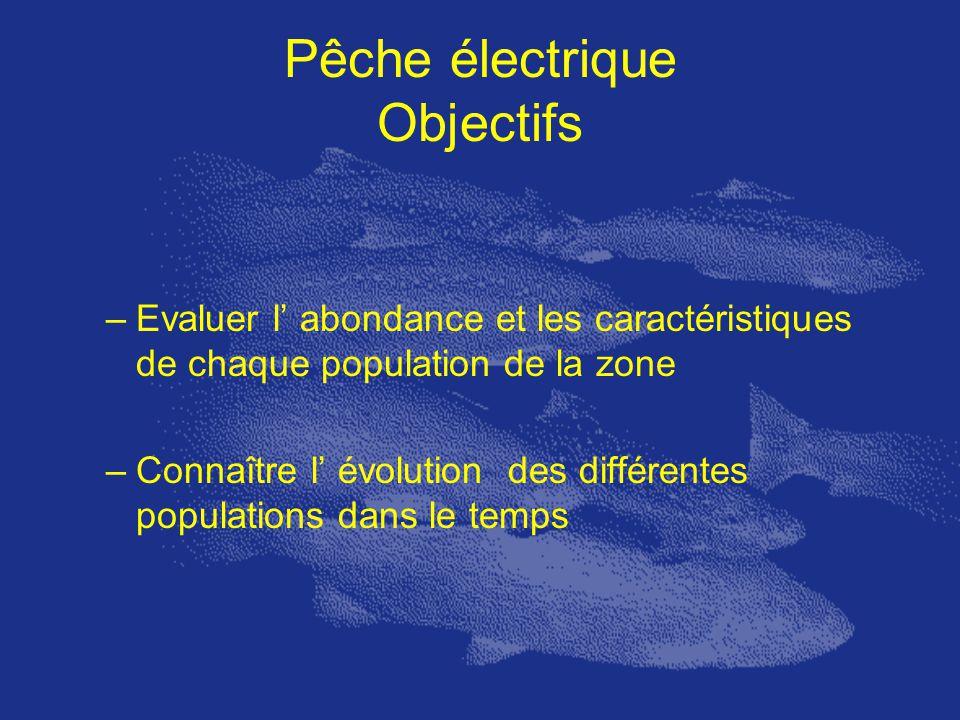 Pêche électrique Objectifs –Evaluer l abondance et les caractéristiques de chaque population de la zone –Connaître l évolution des différentes populat
