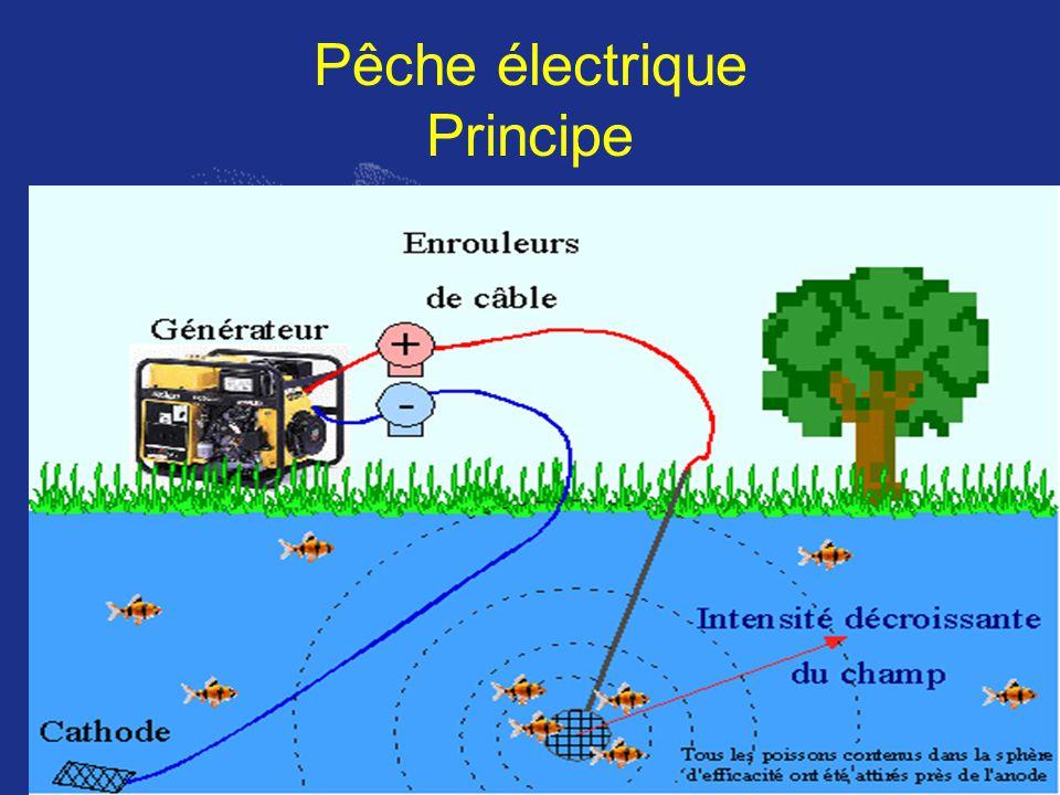 Pêche électrique Principe