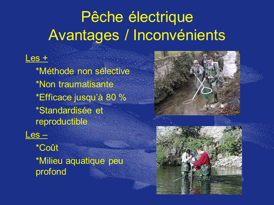 Pêche électrique Avantages / Inconvénients Les + *Méthode non sélective *Non traumatisante *Efficace jusquà 80 % *Standardisée et reproductible Les –