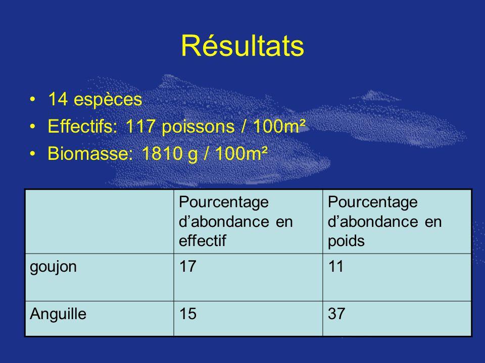 Résultats 14 espèces Effectifs: 117 poissons / 100m² Biomasse: 1810 g / 100m² Pourcentage dabondance en effectif Pourcentage dabondance en poids goujo