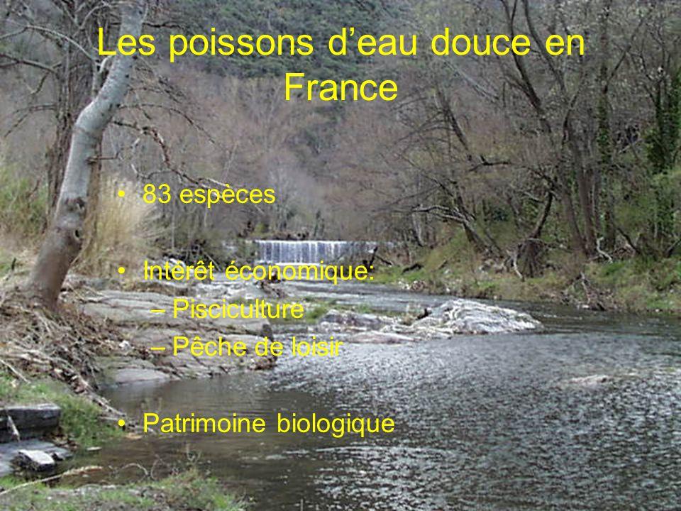 Les poissons deau douce en France 83 espèces Intérêt économique: –Pisciculture –Pêche de loisir Patrimoine biologique