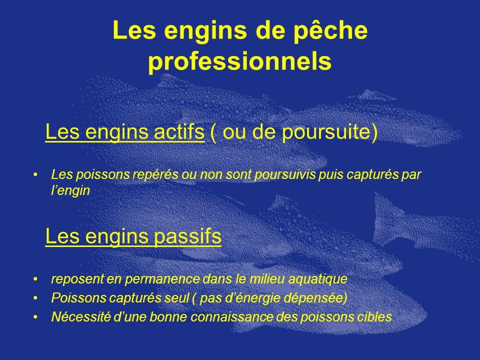 Les engins de pêche professionnels Les engins actifs ( ou de poursuite) Les poissons repérés ou non sont poursuivis puis capturés par lengin Les engin