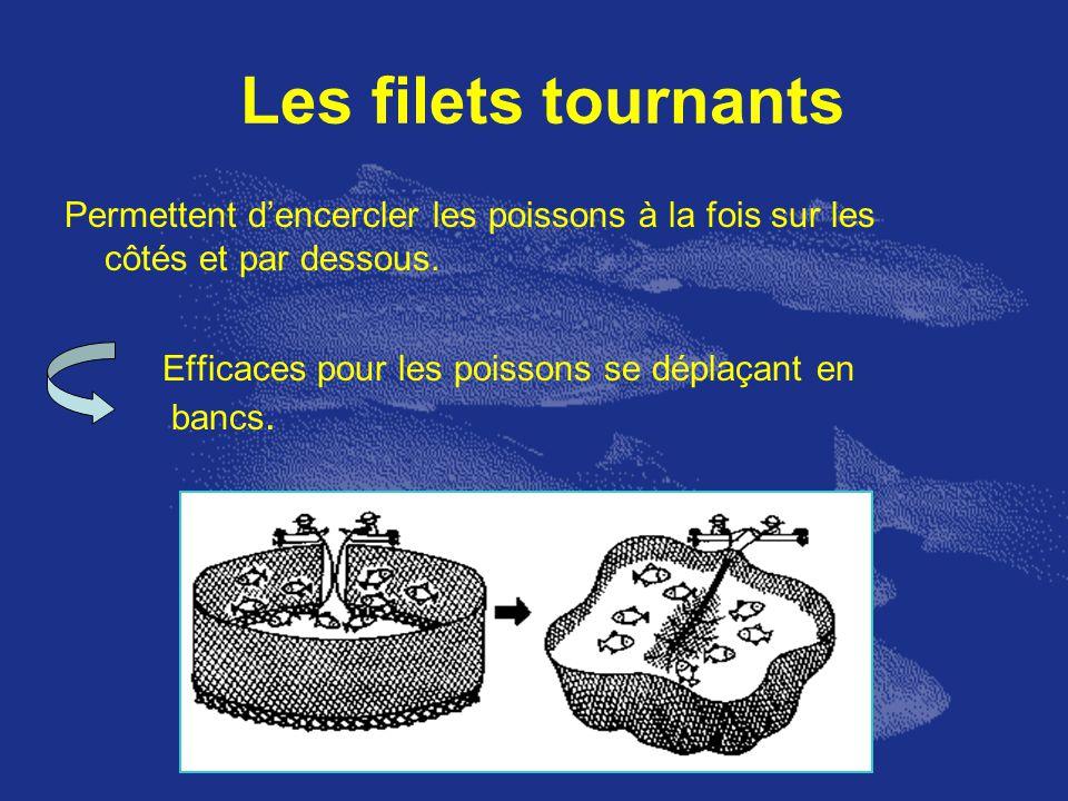 Les filets tournants Permettent dencercler les poissons à la fois sur les côtés et par dessous. Efficaces pour les poissons se déplaçant en bancs.