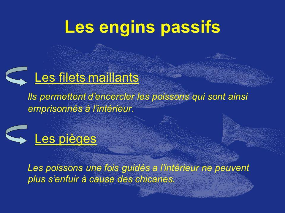 Les engins passifs Les filets maillants Ils permettent dencercler les poissons qui sont ainsi emprisonnés à lintérieur. Les pièges Les poissons une fo