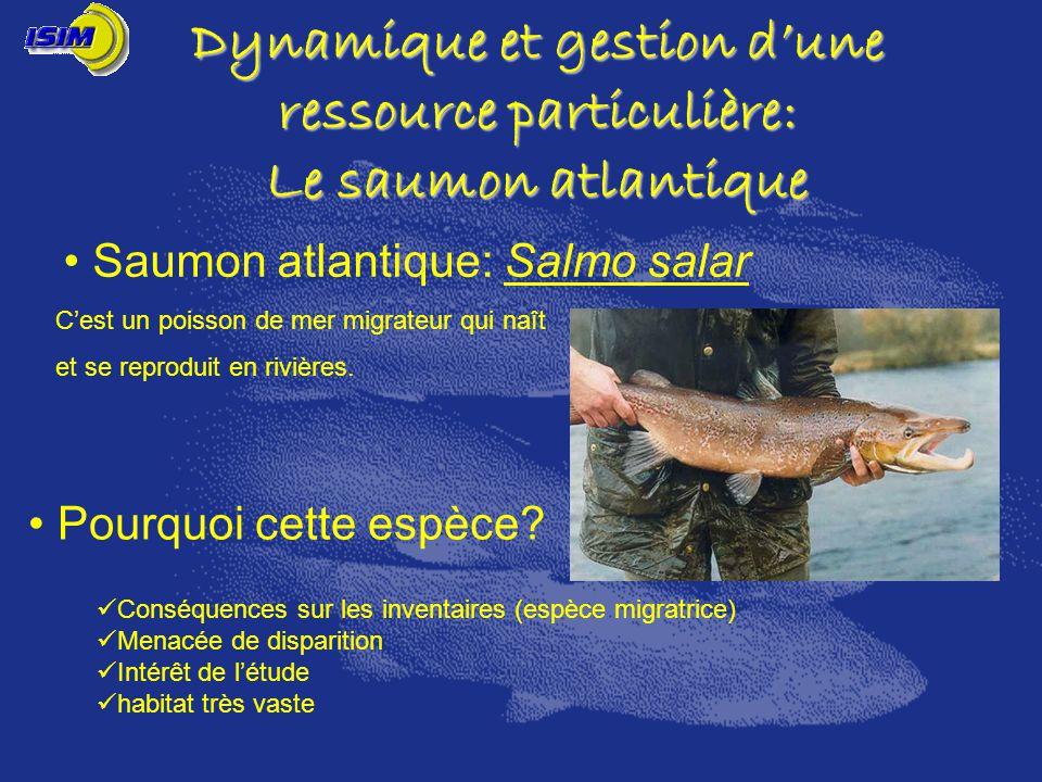 Dynamique et gestion dune ressource particulière: Le saumon atlantique Pourquoi cette espèce? Conséquences sur les inventaires (espèce migratrice) Men