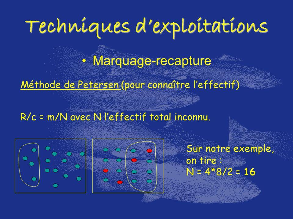 Marquage-recapture Techniques dexploitations Méthode de Petersen (pour connaître leffectif) R/c = m/N avec N leffectif total inconnu. Sur notre exempl