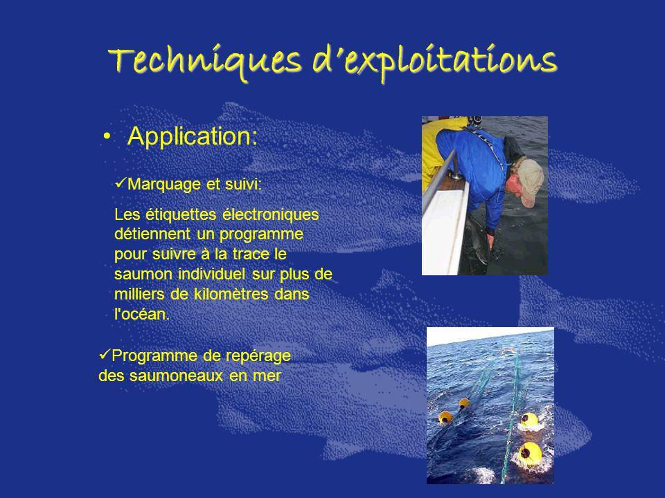 Techniques dexploitations Application: Marquage et suivi: Les étiquettes électroniques détiennent un programme pour suivre à la trace le saumon indivi
