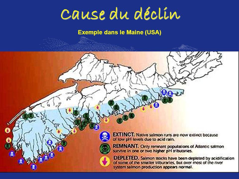 Cause du déclin Exemple dans le Maine (USA)